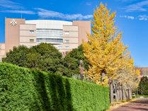 *【紅葉(一例)】当ホテル周辺を散策して、紅葉狩りをお楽しみください