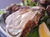 【夏限定】大粒な身の旬な岩牡蠣を♪丹後の新鮮な海の幸×岩牡蠣を余すことなく味わうプラン