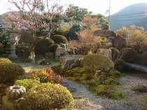 枯山水のお庭。