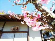 2~4月限定 春の彩りプラン