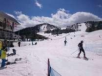 【ファミリープラン】スキー旅行の家族に嬉しい♪ゲレンデは目の前!小学生半額特典【一泊二食付き】