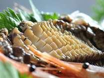地鮑の刺身は、春の贅沢な一品