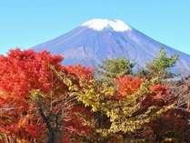 秋の富士山と紅葉は絶景です!