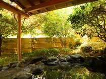 露天風呂。木々の和らぎ風を感じながらゆったりと湯浴みをお楽しみください