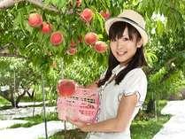産地ならではの味わい♪金桜園もも狩りプラン☆