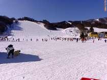 関東唯一のスキーヤー専用ゲレンデ、片品高原スキー場です。宿から車で3分^^(写真12月29日)