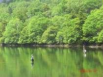 奥日光、湯の湖での釣り(初夏)