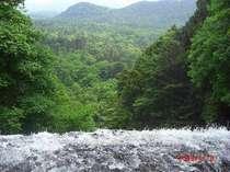 奥日光、湯滝の上から。