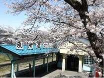 上田駅から別所温泉までは昔懐かしい「別所線」に揺られながら