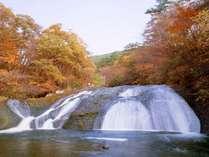 10月20日~11月上旬頃まで各お部屋と釜淵の滝で紅葉がお楽しみ頂けます。