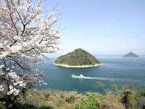 桜の見頃は3月下旬~4月中旬のあたりです(天候により変動します)