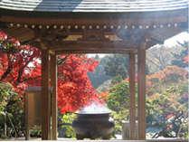 四国霊場82番 根香寺。県内でも紅葉の美しいお寺として有名。牛鬼伝説の残るお寺です。