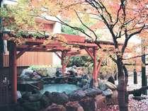 【2F もみじ湯/露天風呂】秋の紅葉はまさに絶景。湯けむりの奥には落ち葉のじゅうたんが