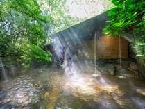 木々の間から光が射して身心ともにリラックス☆肌に優しい無味無臭の弱酸性単純泉!
