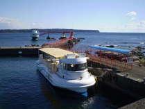 海中公園桟橋に着く半潜水艦型観光船と桟橋先端の海中展望塔