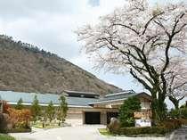 「ホテルはつはな」の由来は、その年に最初に咲くさくらを意味します。