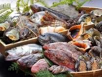 【瀬戸内の鮮魚会席プラン】獲れたて!新鮮な瀬戸内魚介盛りだくさん♪