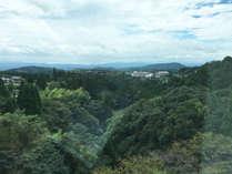 南館【桜島を望む】和の風情溢れるスタンダード和室のお部屋からは、壮大な景色を楽しめます。