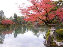 名勝兼六園の秋。どこを歩いても絵になります