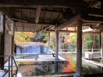 姉妹館・四万たむら 紅葉が美しい滝見の露天風呂森のこだま*要湯めぐりパスポート:有料