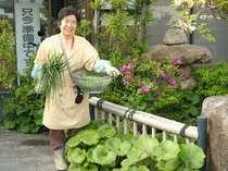 母95歳が教えてくれる野菜料理が自慢です☆新鮮野菜を心を込めて調理いたします♪