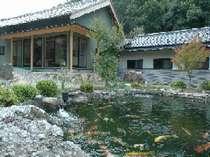 錦鯉が泳ぐ池