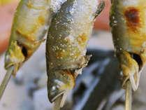 【鮎の塩焼き】天然の鮎をまるごとお召し上がりください♪