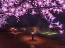 【天空ガーデンスパ・春のイルミネーション】4/1~5/31迄開催♪