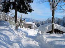 *【周辺】雪質が軽くサラサラとした黒姫高原の雪。スキーやスノボには最適です。