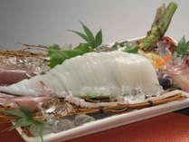 白イカの姿造り(イメージ)