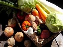 まず、新鮮な野菜をそろえて、それから・・・