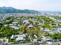 妙心寺は46ヶ寺を擁する臨済宗妙心寺派の大本山です。花園会館はその東隣にあります。(妙心寺全景)