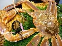【金の札を付けた松葉蟹】のプラン
