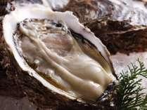 【じゃらん限定タイムセール】夏の一押し☆大つぶの岩牡蠣付き懐石&但馬牛orアワビの1品チョイス!
