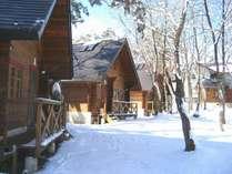 冬のブラウニー コテージ,長野県,コテージ&コンドミニアム白馬ブラウニー