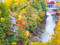 *宿のすぐ横には天竜川が流れており、宿周辺は紅葉の名所です。