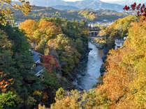 *【紅葉】天龍川と木々が色めく