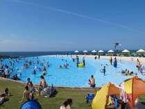 【芝政ワールド】夏のプールは芝政で決まり☆日本最大級のリゾートプール『スーパーパスポート付』