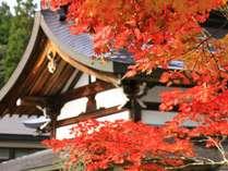 秋色に染まる当館。秋は戸隠が最も美しい季節と言われています。