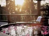 お部屋の露天風呂にはお花を浮かべて