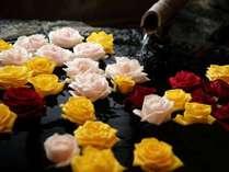 【貸切風呂/こずみ】バラを浮かべて、ちょっぴり贅沢な気分♪※ご用意できない場合もございます。