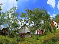 貸し別荘Orkへようこそ。大自然を満喫しにお越しください。皆さまのお越しを心よりお待ちしております。