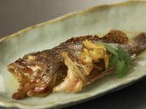 新鮮だから身が弾けます! 煮魚の一例(ガシラ)