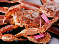 評価の高い良質の柴山ガニを、かめやならではの手づくり料理とリーズナブル価格でお楽しみください。
