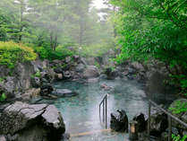 夏にはむせるほど濃い緑いっぱいの露天岩風呂。