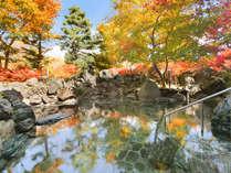 彩り鮮やかに染まった紅葉の露天風呂は年間を通じて1番人気!