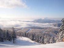 スーパープライス!静寂な裏磐梯で楽しむ【ライトプラン】~ちょっと気軽な冬の温泉旅~(夕食は洋食)