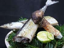 秋刀魚の塩焼きと松茸宝楽焼き。プラスワンのお楽しみ セレクトメニュー(イメージ)