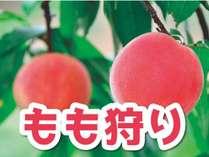 果物王国福島「桃」狩り食べ放題