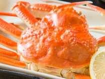 【ずわい蟹】 姿蟹イメージ